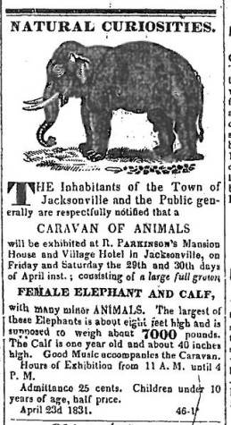 Elephant - Western Observer - April 23 1831_Page_15